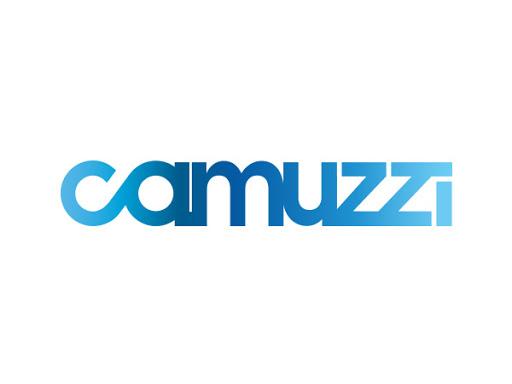 Información de Camuzzi Gas Pampeana